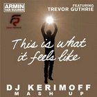 Armin Van Buuren vs. Ron May - This Is What Is Feels Like (DJ Kerimoff Mash Up) [2013]