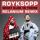 Royksopp - What Else Is There (Relanium Remix) [2013]