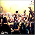 Martin Garrix feat. Jay Hardway - Wizard (Mike Mill & Tigrov Remix) [2013]