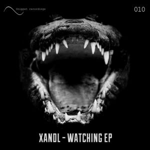 Xandl - hook up