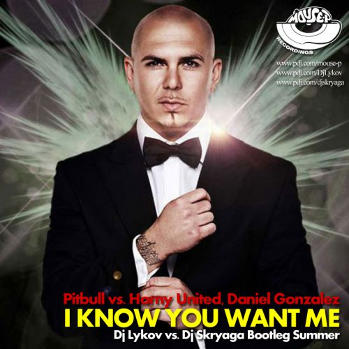 Pitbull vs. Horny United, Daniel Gonzalez, Mart - I Know You Want Me (Dj Lykov & Dj Skryaga Summer)