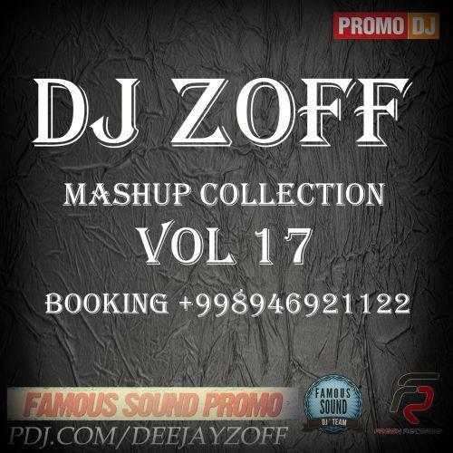 DJ Zoff Mashup Collection Vol. 17 [2014]