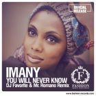Imany - You Will Never Know (DJ Favorite & Mr. Romano Official Remix) [2014]
