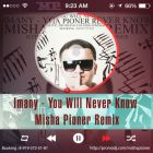 Imany - You Will Never Know (Misha Pioner Remix; Radio Edit) [2014]