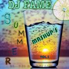 Dj Fame - Summer Mashup's Vol. 3 [2014]