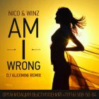 Nico & Vinz - Am I Wrong (DJ Alex Mini Radio; Extended Remix's) [2014]