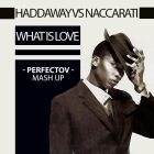 Haddaway vs Naccarati - What Is Rock (Perfectov Mash Up) [2014]