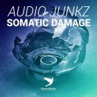 Audio Junkz - Somatic Damage (Original Mix) [2014]