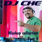 DJ Che - Mashup Collection Part 9 [2014]