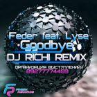 Feder feat. Lyse � Goodbye (Dj Richi Remix) [2014]