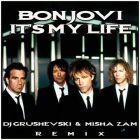 Bon Jovi - It's My Life (DJ Grushevski & Misha Zam Remix) [2014]