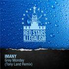 Imany - Grey Monday (Tony Land Remix) [2015]