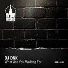 DJ Dnk - What Are You Waiting For [2015]