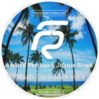 Andrey Vertuga & Johnie Breez - Mash-Up Dance Vol.1 [2015]
