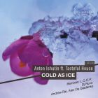 Anton Ishutin Feat. Tasteful House - Cold As Ice (Andrew Rai & Alex Dee Gladenko Remix) [2015]