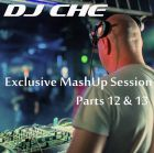 DJ Che - Exclusive MashUp Session (Parts 12 & 13) [2015]