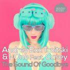 Andrey Exx, Troitski & I-One Feat. Casey - The Sound Of Goodbye (Original Mix; Ingo & Micaele; Natema; Funkfresh Remix's) [2015]