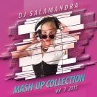 Dj Salamandra - Mash-Up Collection Vol. 3 [2015]