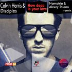 Calvin Harris & Disciples - How Deep Is Your Love (Namatria & Alexey Talano Remix) [2015]