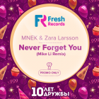 Mnek & Zara Larsson - Never Forget You (Mike Li Remix) [2015]