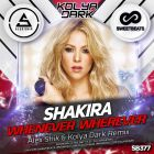 Shakira - Whenever Wherever (Alex Shik & Kolya Dark Remix) [2016]