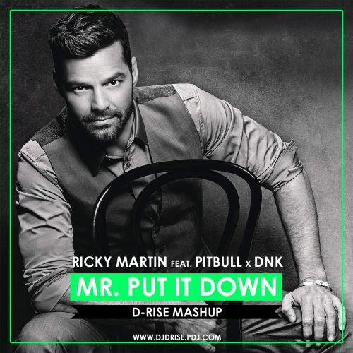 Ricky Martin feat. Pitbull vs. DNK - Mr. Put It Down (D-Rise Mashup) [2016]