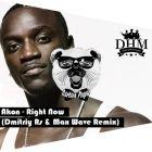 Akon - Right Now (Dmitriy Rs & Max Wave Remix; Dub Version) [2016]