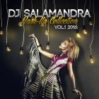 Dj Salamandra - Mash-Up Collection Vol.1 [2016]