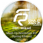 DMC Mikael feat Denis Zubov, Welldone - Mash Up Revolution 11 [2016]