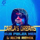 Carla's Dreams � Sub Pielea Mea (Dj Richi Remix) [2016]