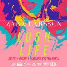 Zara Larsson - Lush Life (Dmitriy 5Star & Harland Kasten Radio; Extended; Dub Remix's) [2016]