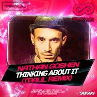 Nathan Goshen - Thinking About It (TPaul Remix)