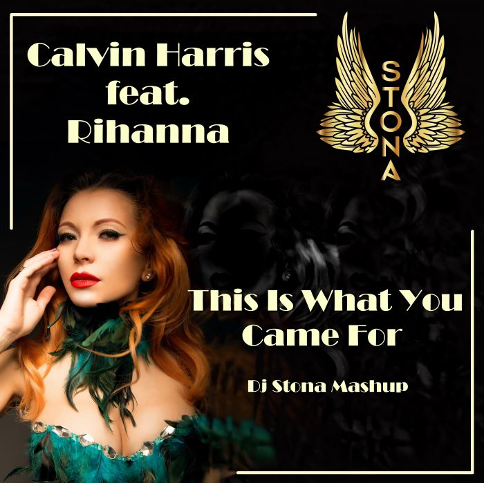 Calvin Harris feat. Rihanna - This Is What You Came For (Dj Stona Mash-Up) [2016]