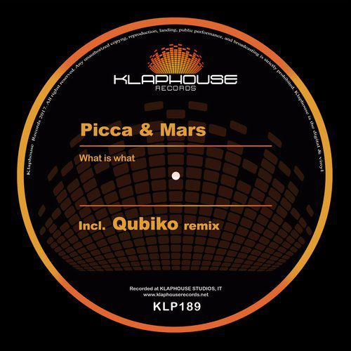 Picca & Mars - What Is What (Qubiko remix)
