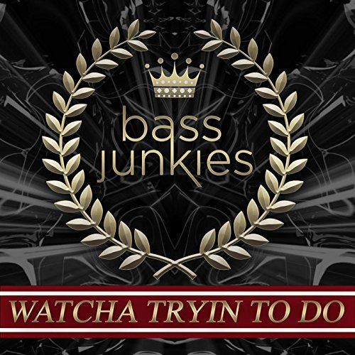 Bass Junkies - Whatcha Tryin To Do (24k Magic) [2016]