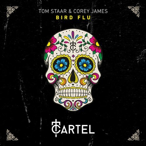 Tom Staar & Corey James - Bird Flu; Mazai, Fomin, Amrick Channa - You Got It; Fully Charged - Take It Back (Extended Mix); Roma De Cicco - U Got Get Up (Fedorovski Remix) [2017]