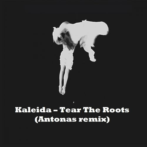 Kaleida - Tear The Roots (Antonas Remix) [2017]