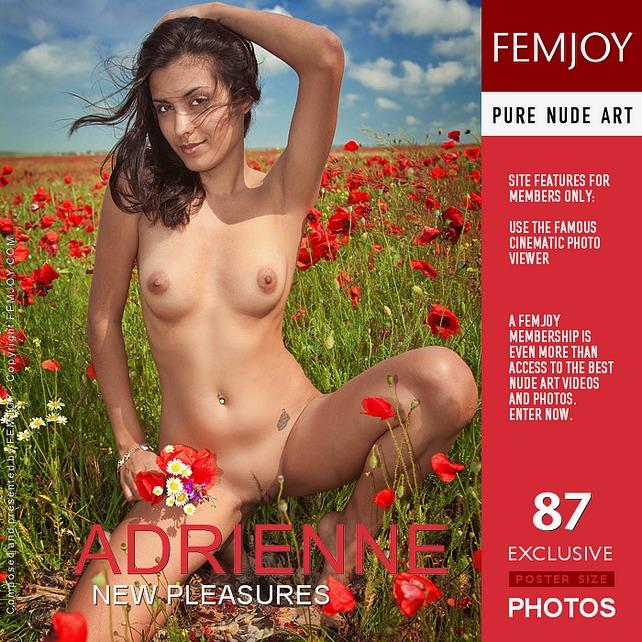 Adrienne - New Pleasures (2011-01-04)