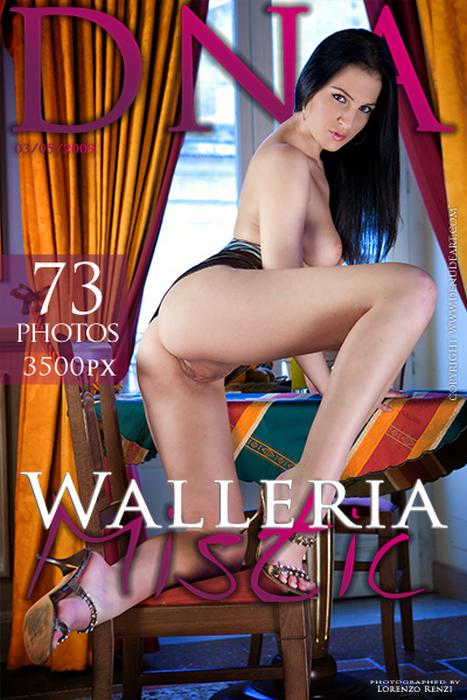 Walleria - Mistic