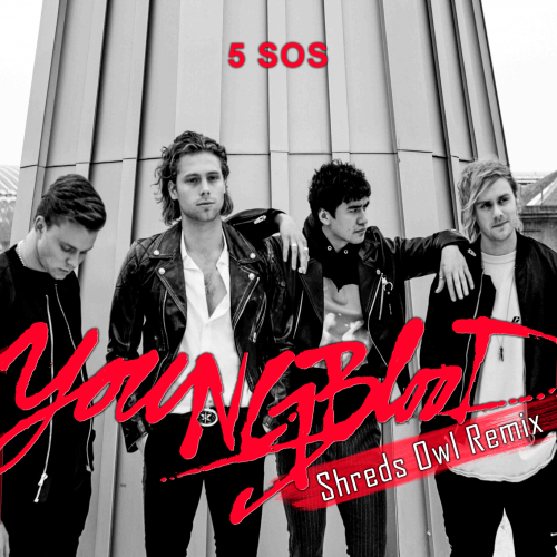 5 Seconds Of Summer - Youngblood (Shreds Owl Remix) [2018]