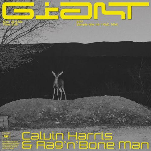 Calvin Harris feat. Rag & Bone Man - Giant (Pink Panda Remix) [2019]