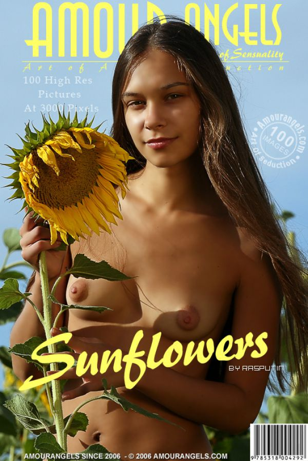 Olga - Sunflowers (x101)