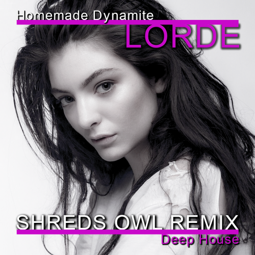 Lorde - Homemade Dynamite (Shreds Owl Extended Remix) [2019]
