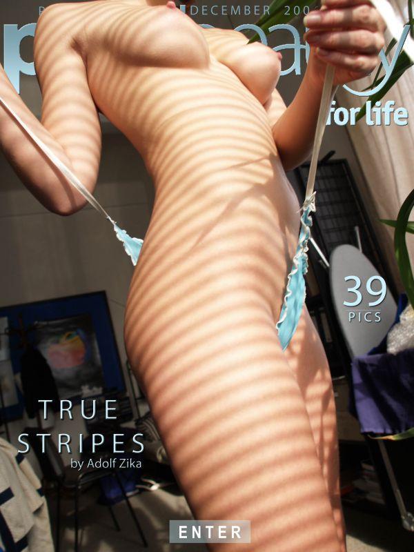 Eva M - True stripes - (x39)