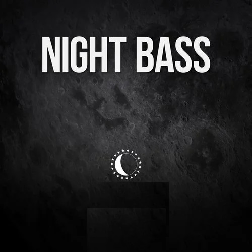 Bushbaby - Naughty Pleasure (Nukid Remix); Chris Lorenzo - Dash (Ac Slater Remix); Hotfire - Do Or Die (Jay Robinson Remix);  Notalike - Bass Back; NuBass - Supreme (Mnnr Remix) [2020]